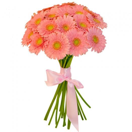 17 розовых гербер