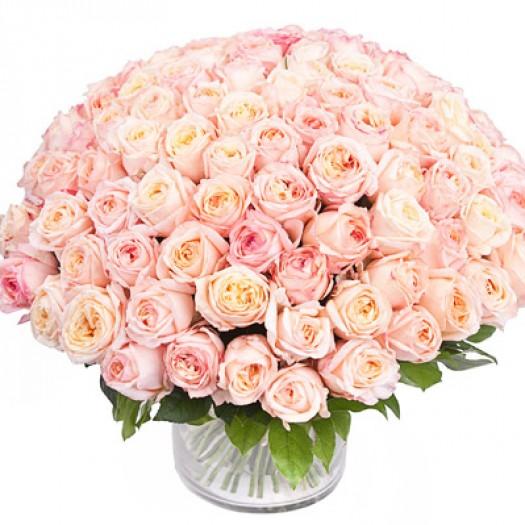 101 садовая роза