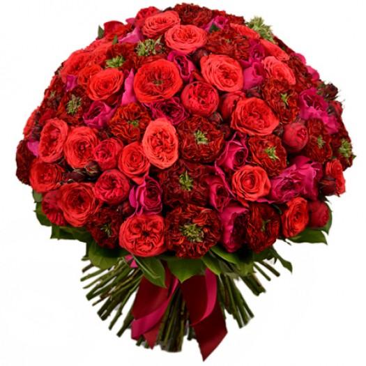 121 садовая роза «David Austin»