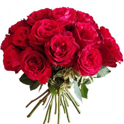 21 садовая роза «David Austin»
