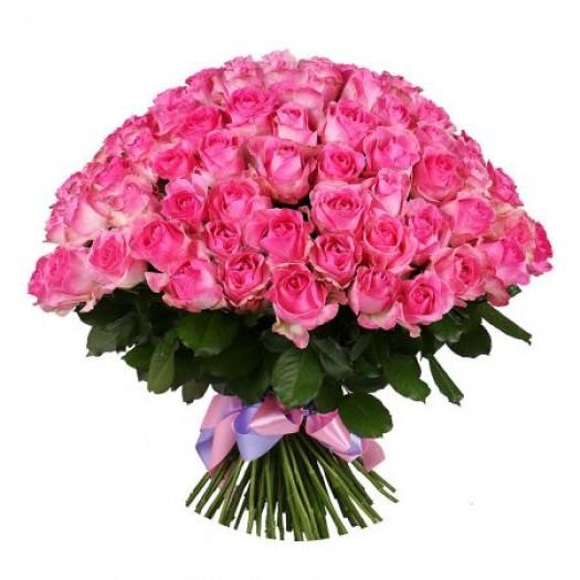 151 ярко-розовая роза