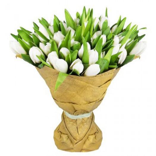 51 белый тюльпан в крафте