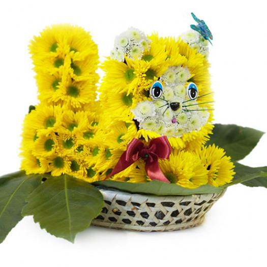 Котик в корзинке из живых цветов